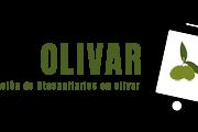 Jornada de divulgación de resultados del Grupo Operativo DOSAOLIVAR